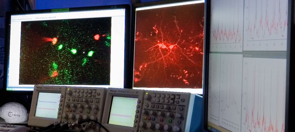On one screen are neurons on which are measures electzric currents, on the other screen these currents are displayed